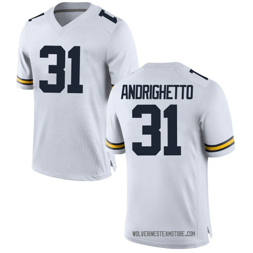 Men's Lucas Andrighetto Michigan Wolverines Replica White Brand Jordan Football College Jersey