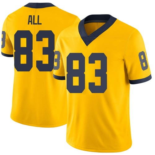 Youth Erick All Michigan Wolverines Limited Brand Jordan Maize Football College Jersey