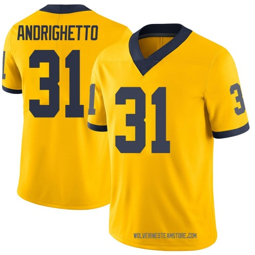 Youth Lucas Andrighetto Michigan Wolverines Limited Brand Jordan Maize Football College Jersey