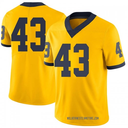 Youth Tyler Grosz Michigan Wolverines Limited Brand Jordan Maize Football College Jersey